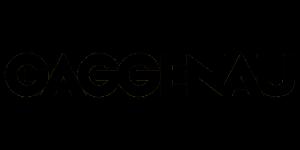 Assistenza Frigoriferi Gaggenau, Riparazione Frigoriferi Gaggenau, Tecnico Frigoriferi Gaggenau, Centro Assistenza Frigoriferi Gaggenau